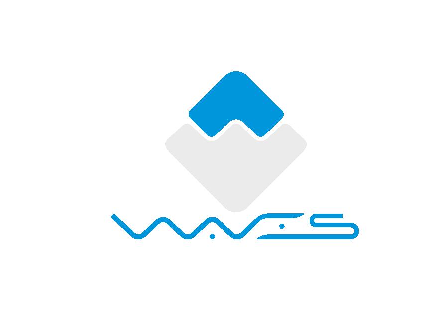 Полный обзор платформы WAVES
