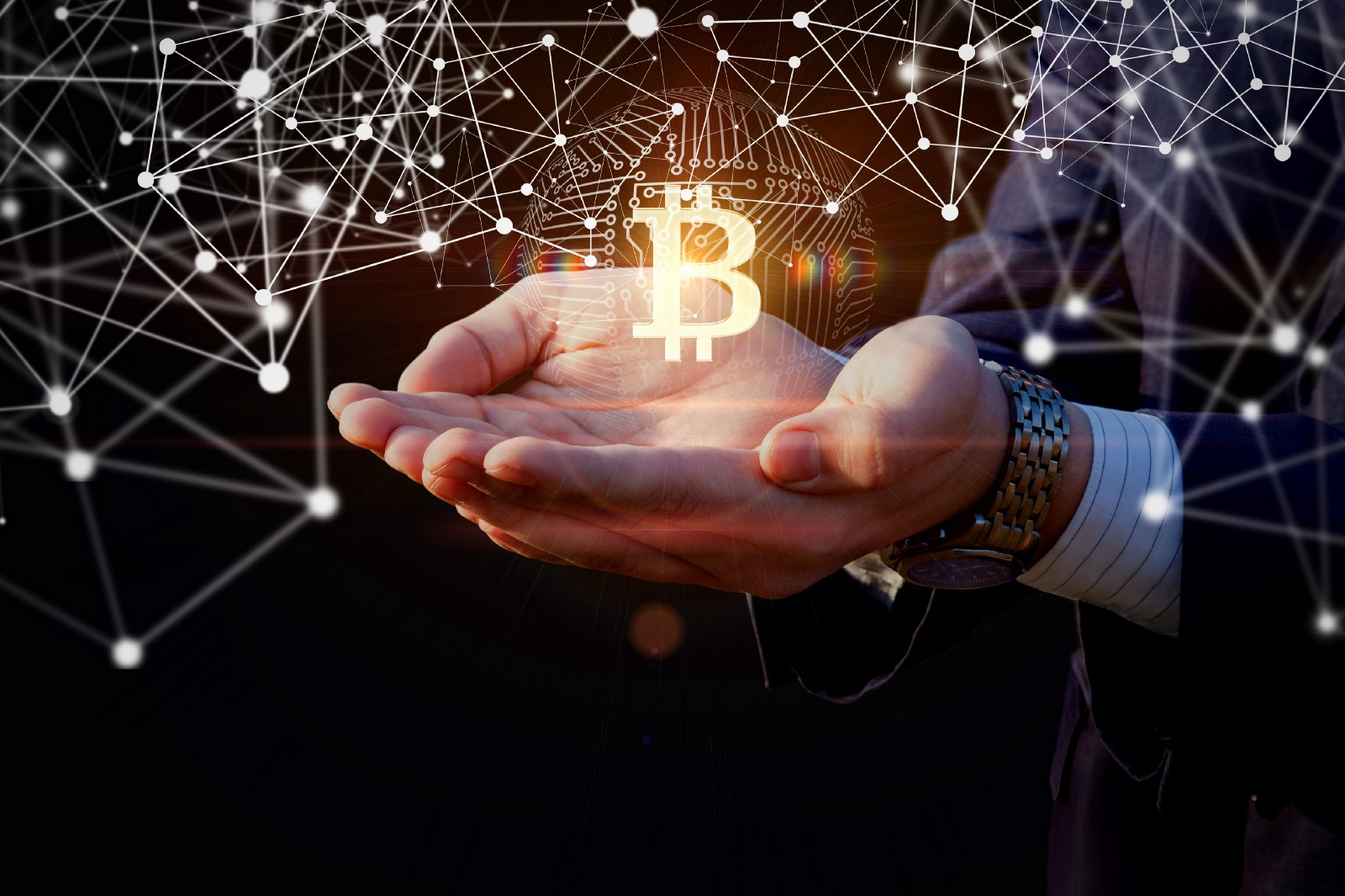 В какую криптовалюту инвестировать