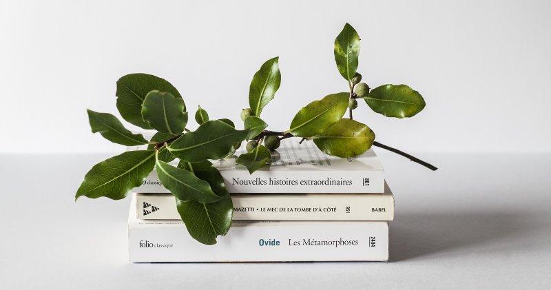 Книга Сатошина Накамото Двойственность. Отрывки