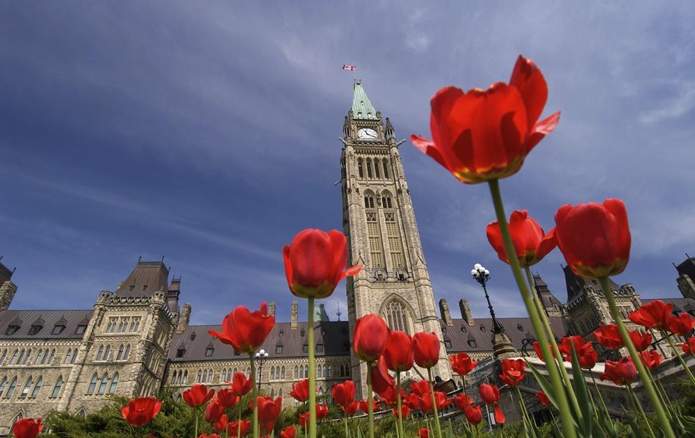 Канадский майнинг дискаунтер Atlas Cloud снова выходит на рынок