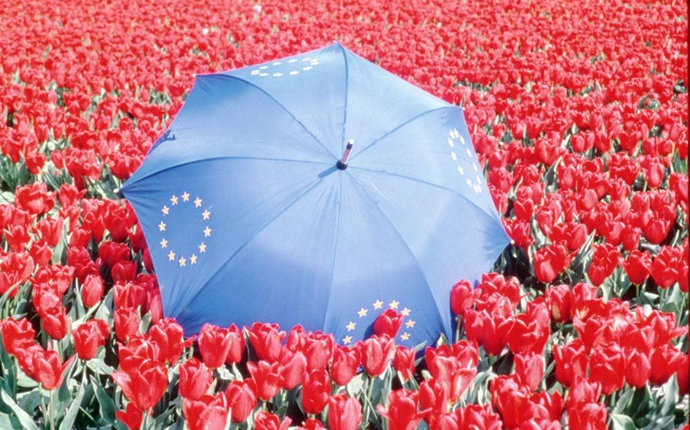 Европа будет бороться с лживой информацией с помощью блокчейна